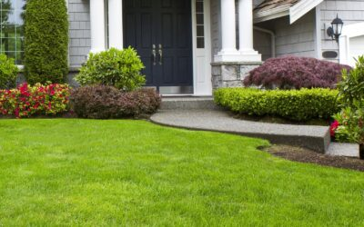 Lawn Mowing Service FAQ'S